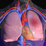 Признаки жидкости легких при сердечной недостаточности