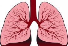 Жидкость в легких при сердечной недостаточности