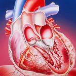 Что делать при болях в желудке, отдающих в сердце