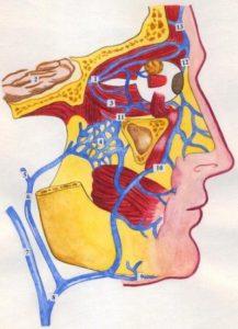 диагностика и симптомы заболевания