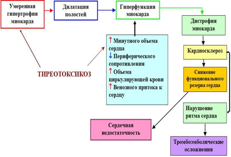Санаторий им вцспс нижегородской области цены на 2016 год с лечением