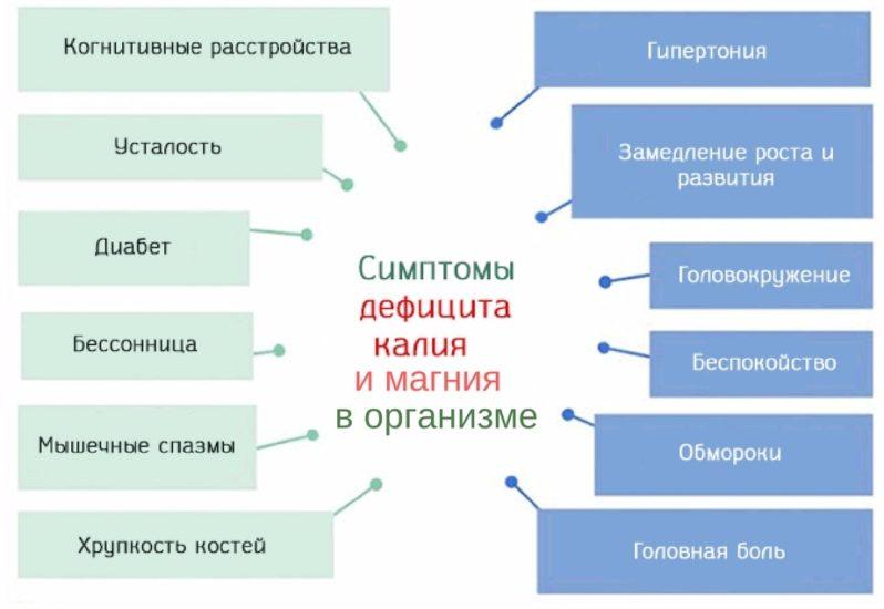 проявления недостатка в организме калия и магния