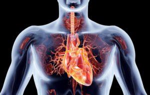 причины и симптомы сочетанного порока сердца