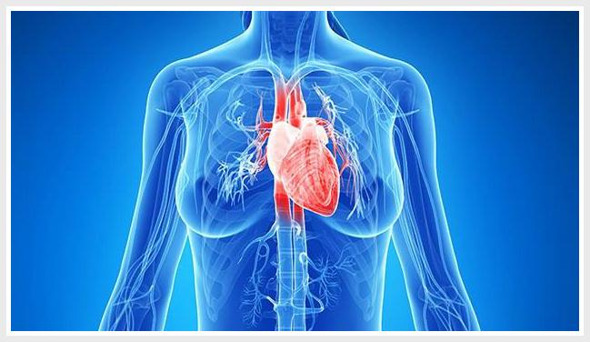 виды аортитов