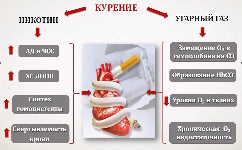 механизм действия курения на сердце