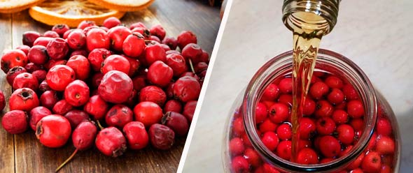 Боярышник ягоды как приготовить
