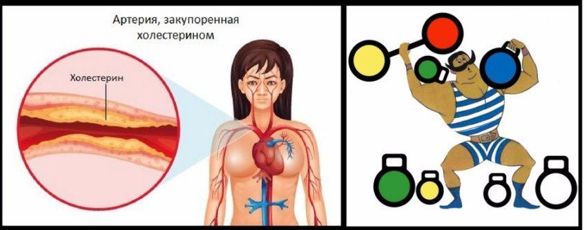 разновидности витамин доппель герц