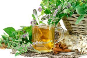 лечение сердечной патологии травами