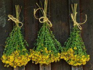 травы при аритмии