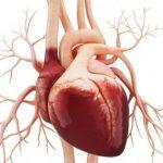 Неотложная помощь при сердечной астме