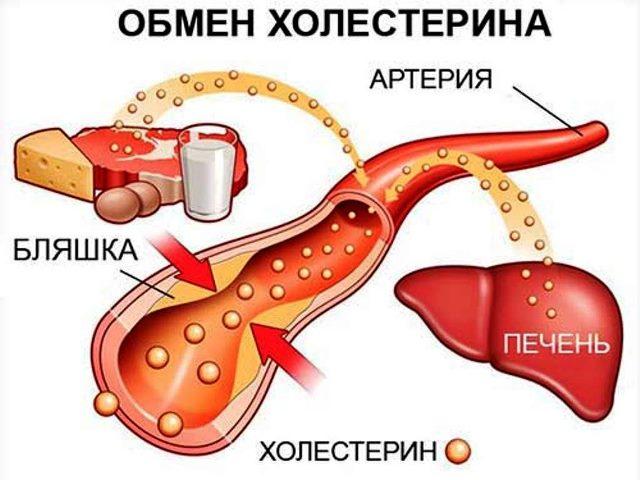 Холестрин