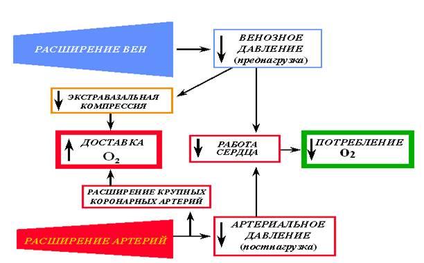 действие кардиотоников