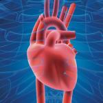МАРС сердца