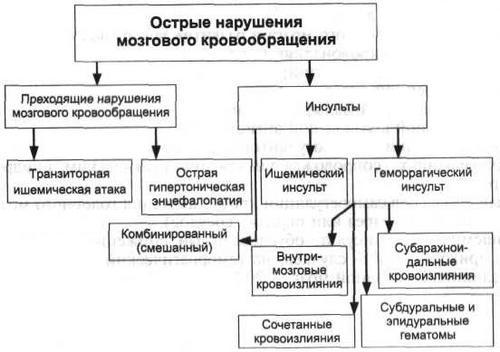 Классификация нарушений мозгового кровообращения