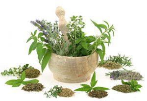 настойки трав и растений