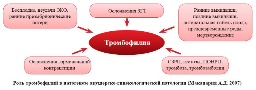 осложнения тробмофилии