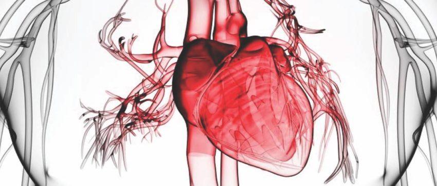 Сотрясение сердца
