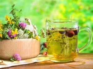 Травы при атеросклерозе