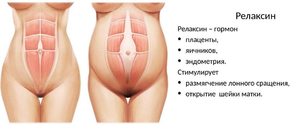 релаксин гормон при беременности