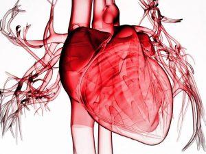 Аневризма сердца: операция