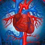 Классификация миокардиодистрофии