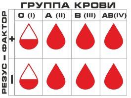 группа крови и резус фактор