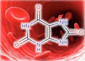 Мочевая кислота в крови: норма