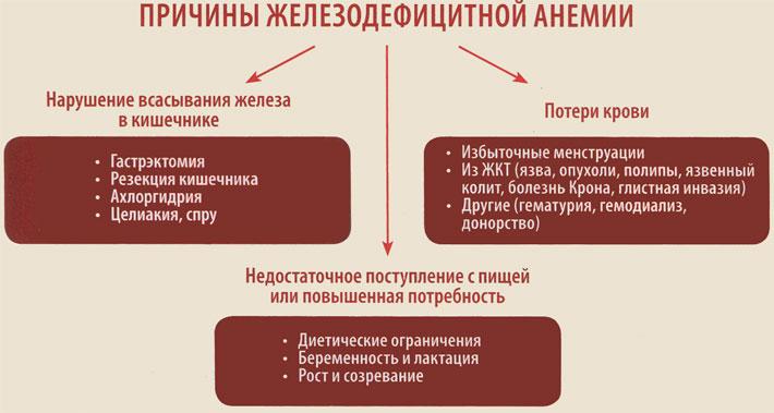 Причины железодефицитной анемии
