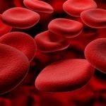 Реология крови