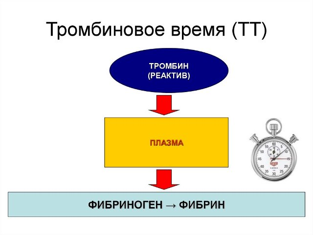 Тромбиновое время