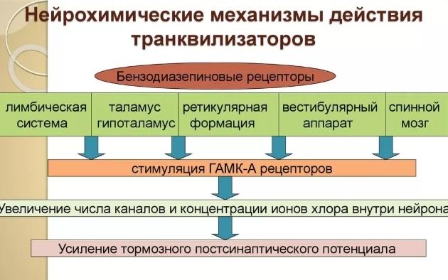 Действие транквилизаторов при ВСД