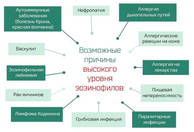 Причины эозонофилии