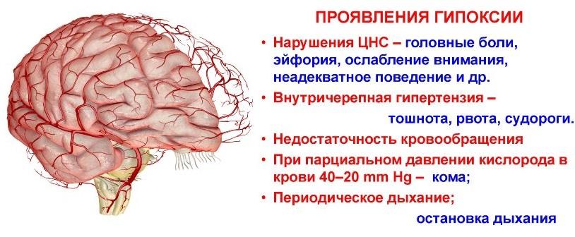 Проявления гипоксии
