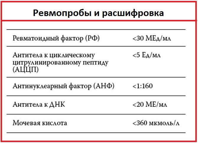 Расшифровка анализа на ревмофактор