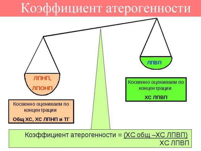 коэффициент атерогенности схема