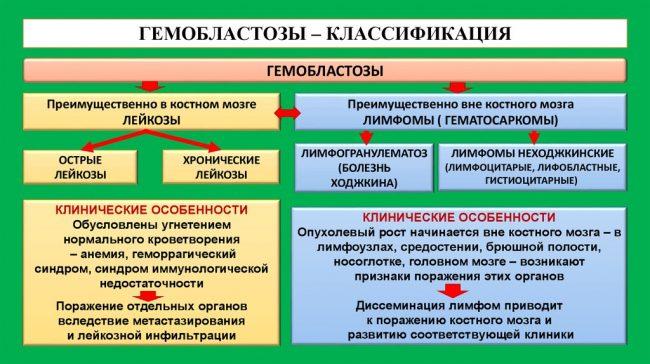 Классификация гемобластозов