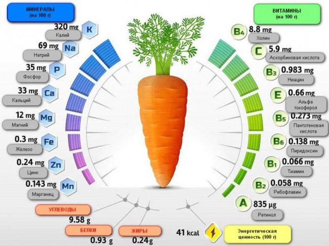 морковь состав рисунок