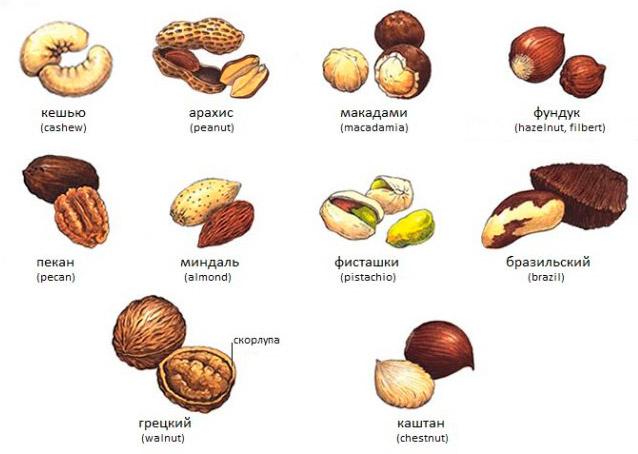 орехи полезны для сердца и сосудов