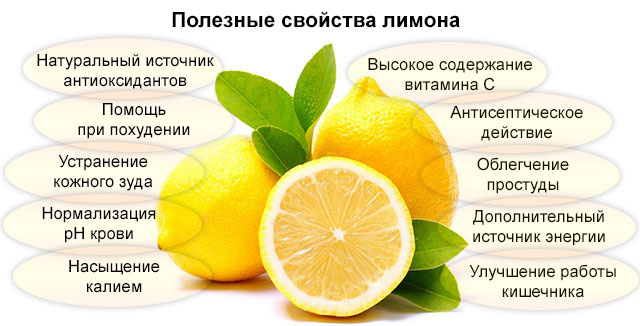 полезные свойства лимона